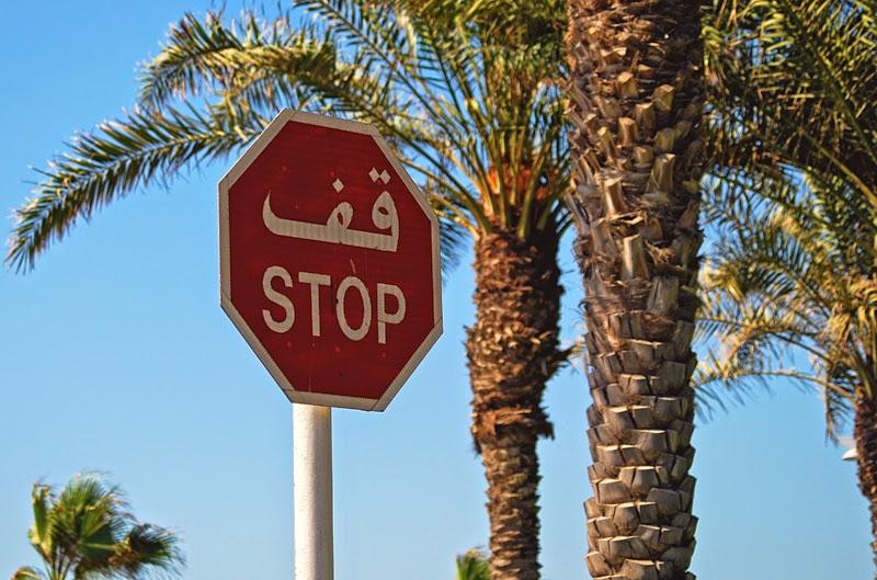 wyspy palmowe wakacje w Dubaju