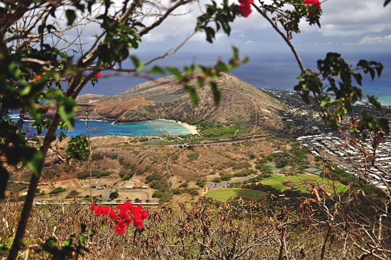 Hanuama Bay Hawaje