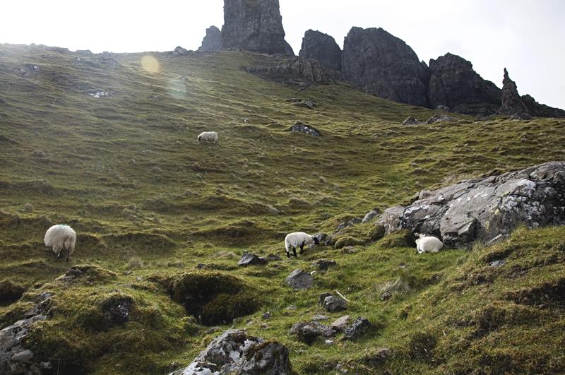 droga do Old Man of Storr Szkocja