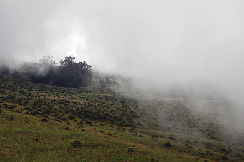 droga na wulkan Haleakala