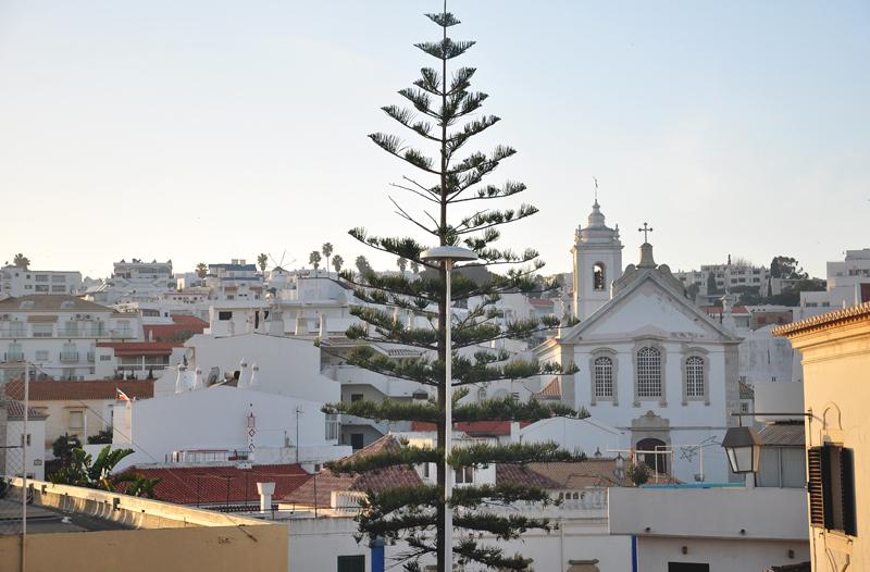 Albufeira wybrzeże Algarve
