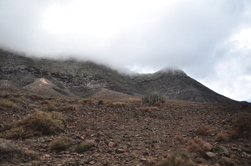krajobraz Fuerteventura