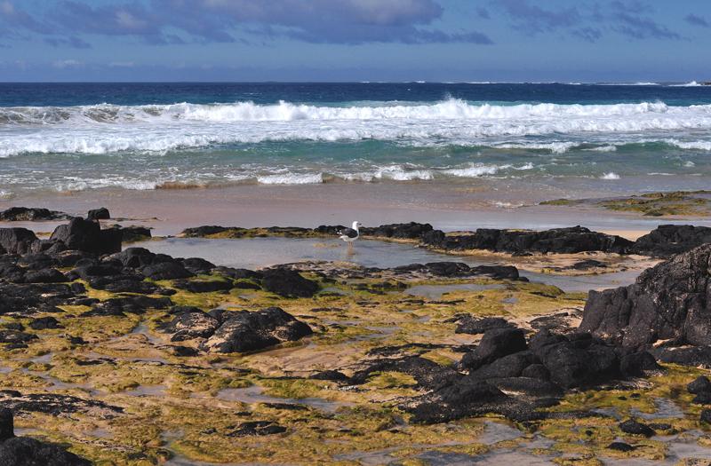 plaża El Cotillo Fuerteventura