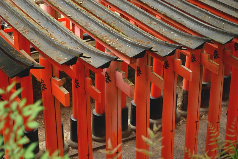 tori kioto
