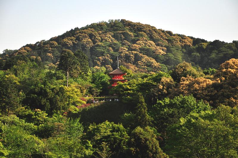 atrakcje kioto