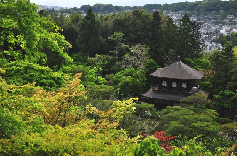 srebrny pawilon kioto