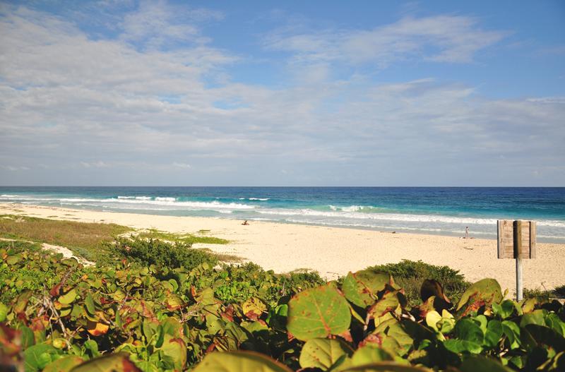 plaża Cozumel