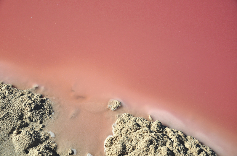 Laguna Las Coloradas