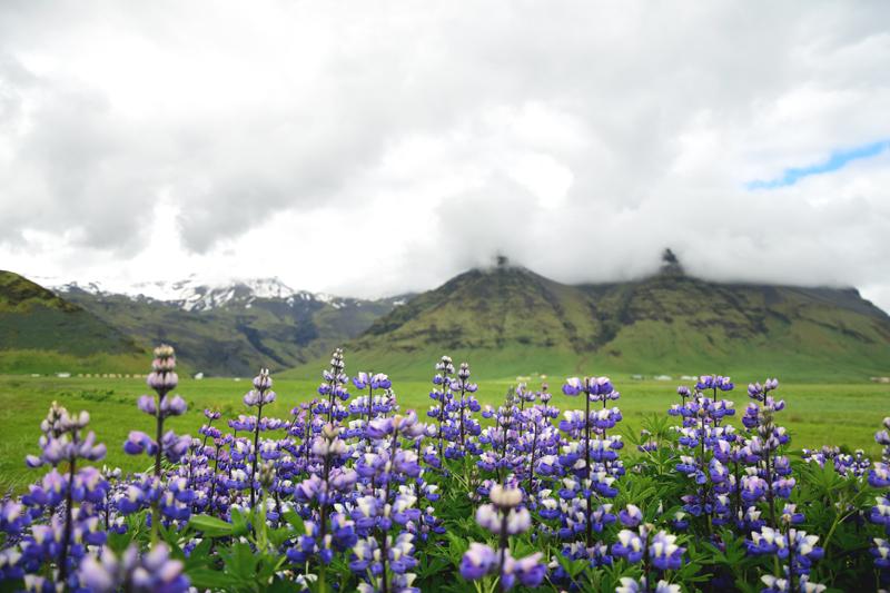 atrakcje islandii