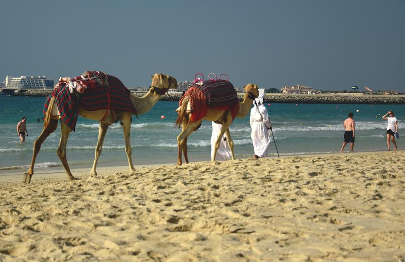 plaża marina dubaj