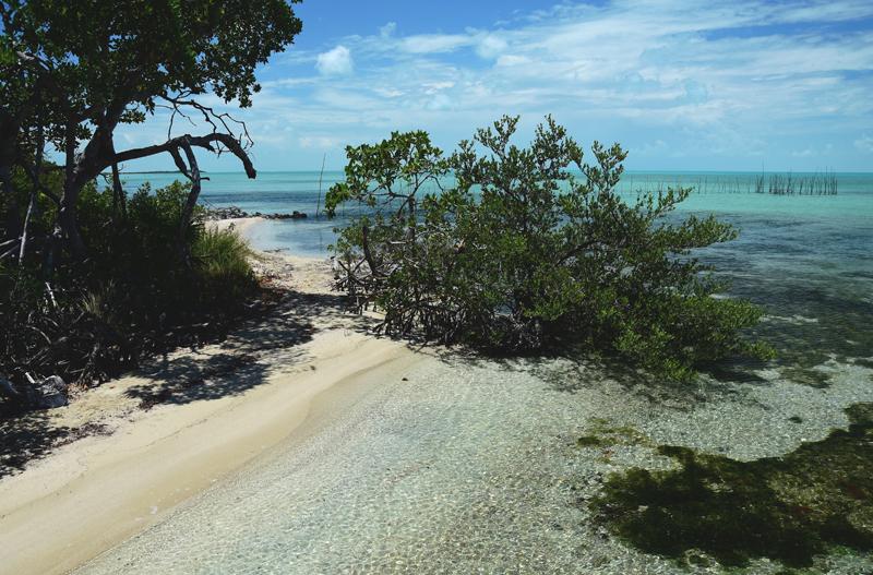 plaże w Belize