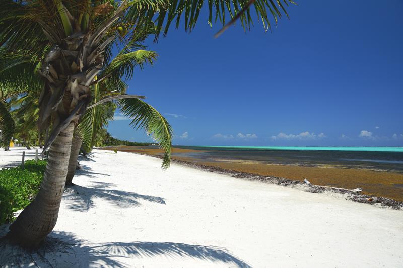 Ambergis Caye plażę