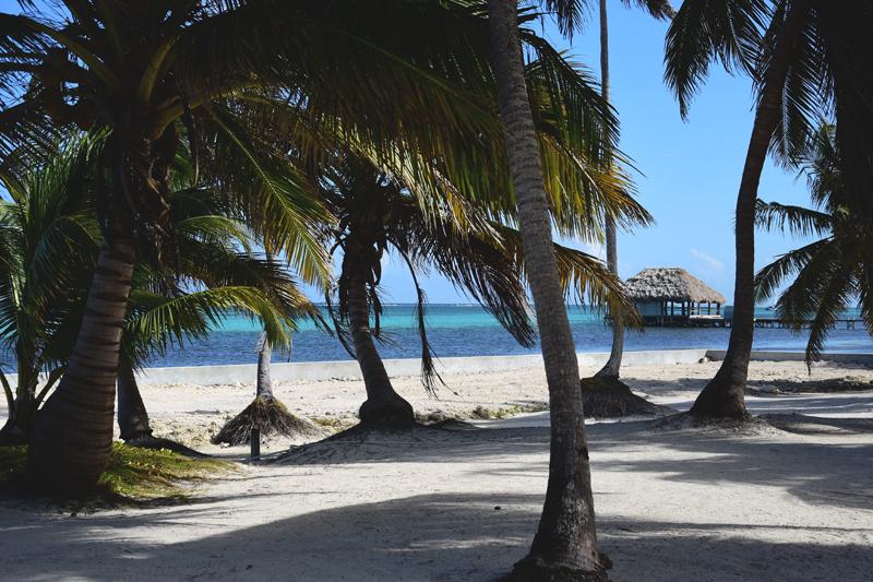 Belize wyspy