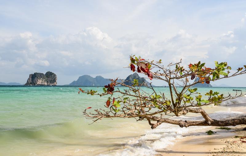Ko Ngai Tajlandia