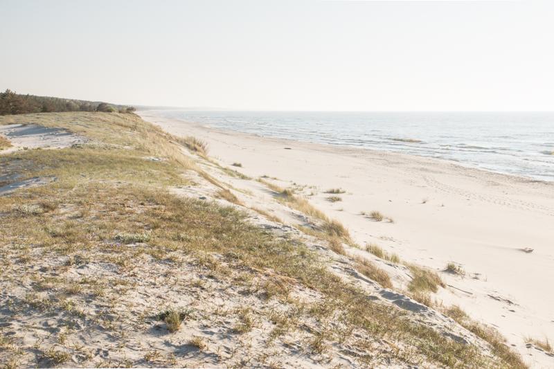 Piaski plaża