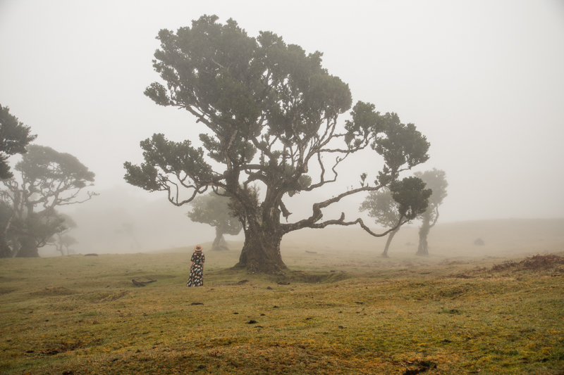 las na Maderze