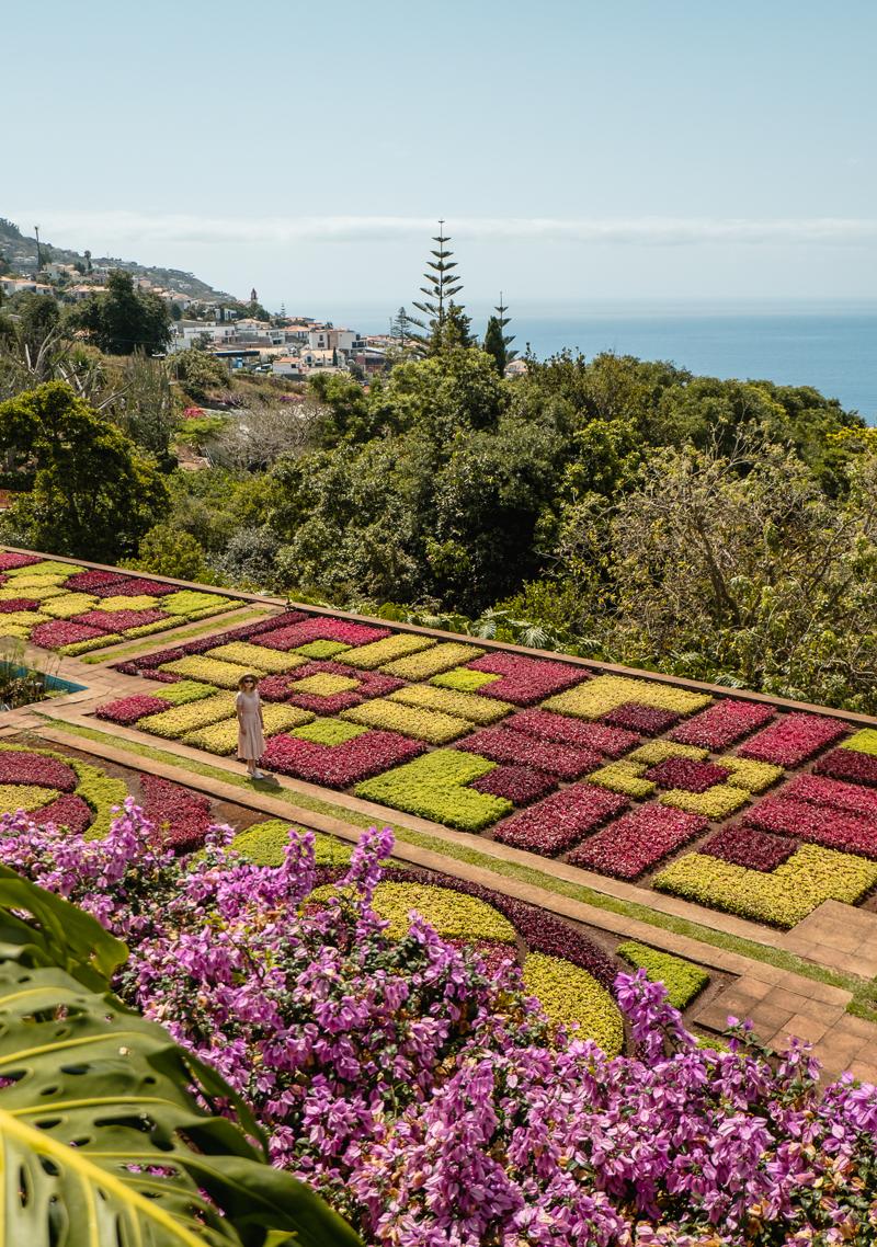 Jardim Botanico w Funchal